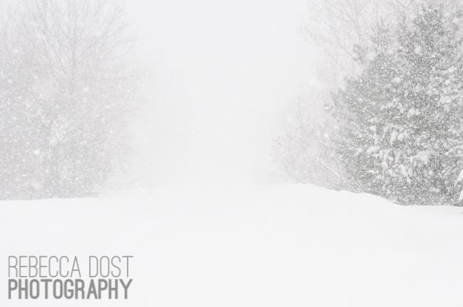 Rebecca Dost Photography