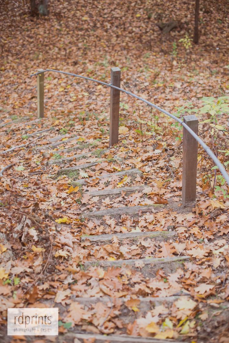 rdprints | autumn leaves