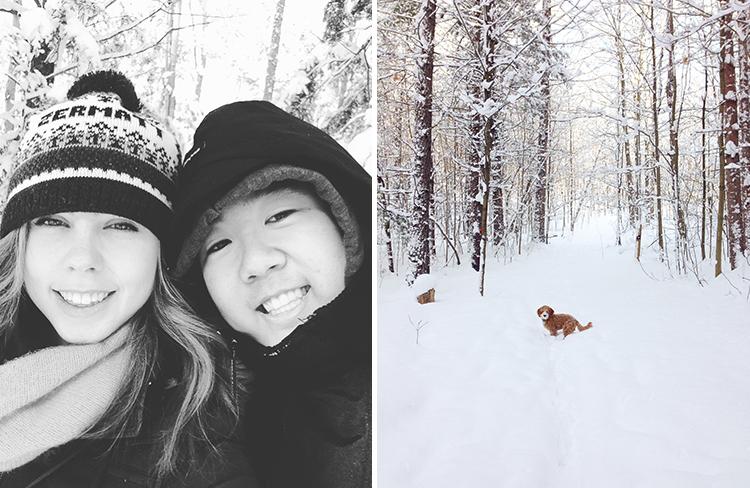 snowywalk_3
